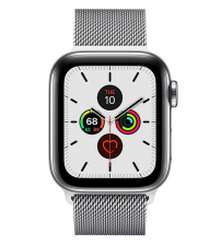 Apple Watch Series 5 40mm (zilver) - Zilver Stainless Steel Case with Milanese Loop